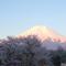 阪井満「忍野からの富士」