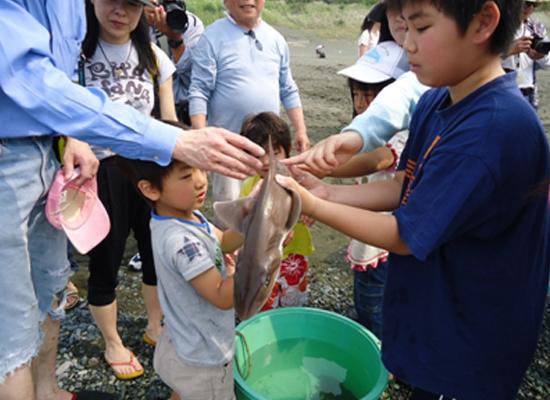 20110607いそっこ海の教室-地曳網05